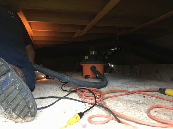 A man crawling into a basement crawl space with a shop vac.