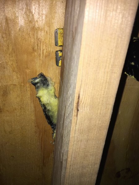 A crow bar prying out yellow fiberglass insulation that is stuck to black paper from behind a beam in a studded wall.