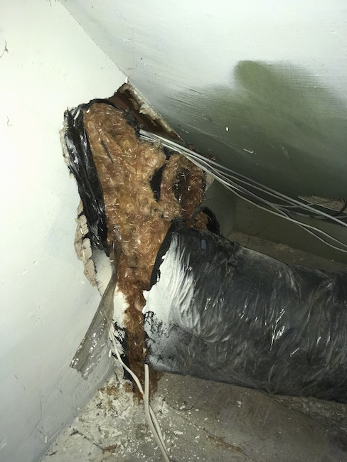 Flex ducts and white wires poking out of the wall of an attic. There is orange fiberglass hanging from the ducts.