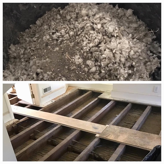 Collage of two images. The first image is of a pile of gray blown in fiberglass insulation. The bottom half of the image is an attic floor with the boards removed showing the grooves the fiberglass was once in.