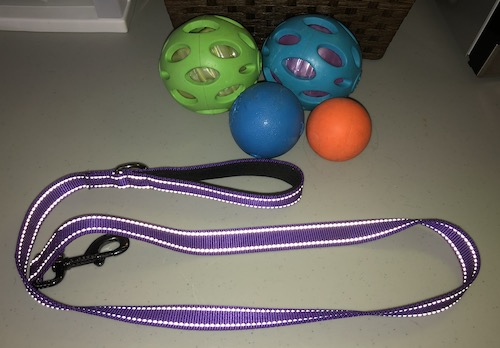 A leash with a foam inner handle, and synthetic rubber balls on a table