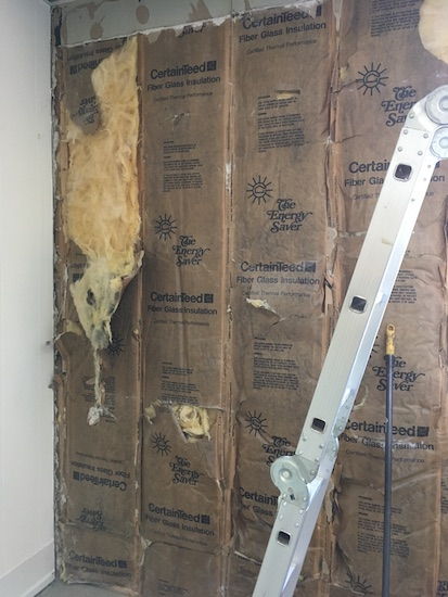 A wall with the drywall removed exposing the yellow fiberglass mostly paper side out with some of it ripped showing yellow fiberglass with a silver ladder leaning against the wall.