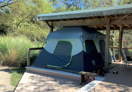 A blue and gray Coleman tent set up under the roof of a deck. There is a gray American Bully dog sleeping next to the tent.