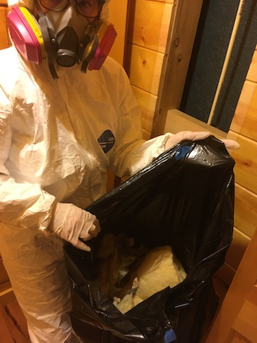 A person in a white hazmat suit wearing a pink 3M filterette fiberglass-free respirator holding a black bag full of yellow fiberglass batt insulation.