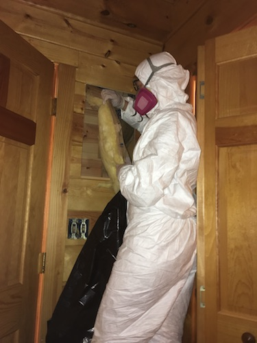 A person in a white hazmat suit wearing a pink 3M filterette fiberglass-free respirator slowly pulling out a long yellow fiberglass batt of insulation and putting it into a black contractor bag.