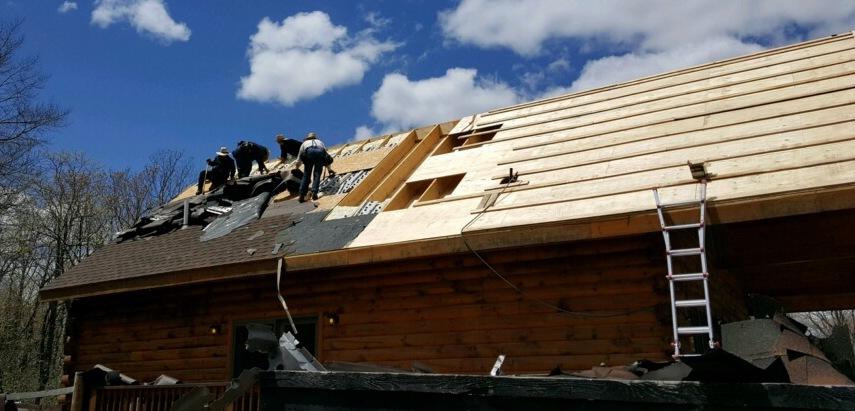 Four Amish men on the roof of a log cabin ripping off black roof shingles.