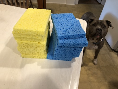 A pile of yellow and blue sponges with a dog watching in the distance inside of a kitchen