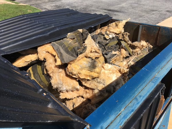 A blue dumpster full of moldy fiberglass insulation.